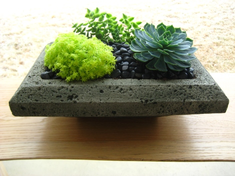 Succulents planted in a low concrete container, topped with polished black stones.